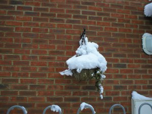 A hanging basket piled high with snow