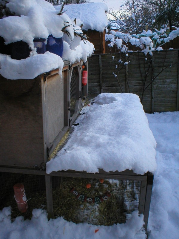 Rabbit hutch in the snow in January 2010