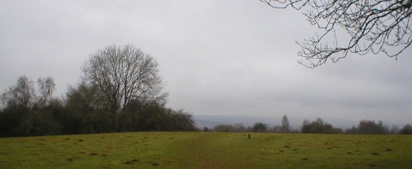 A rather gloomy day at Shotover Hill, but at least there's no snow.