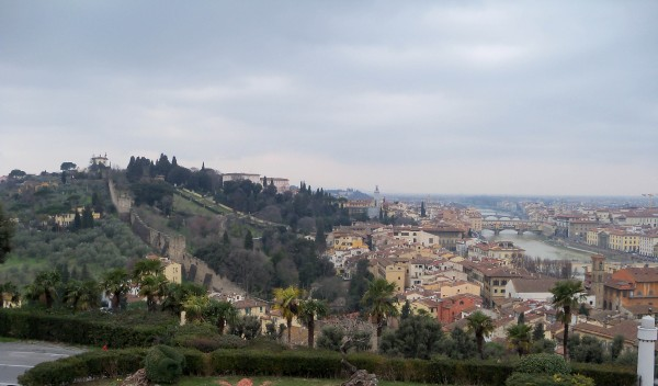 A view across Florence