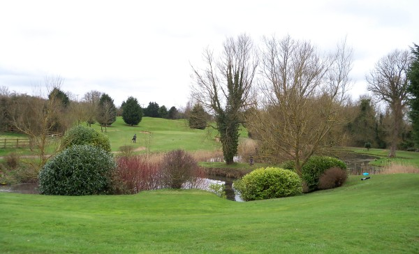 The lush, highly managed, greens of Farringdon Golf Course