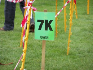 The 7k distance marker at the end of the race