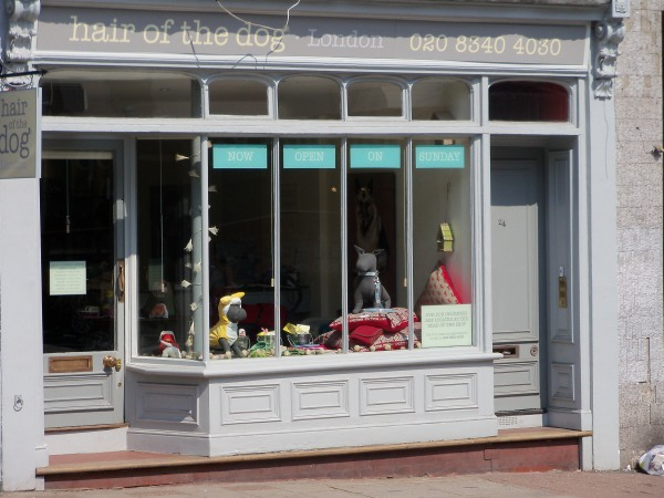 Hair of the Dog is a shop in Highgate that specialises in canine clothing