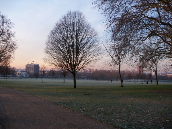 A frosty sunrise in Finsbury Park on my way to work