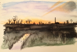 The fens at sunset